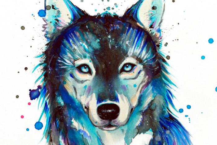 dark-wolf-00